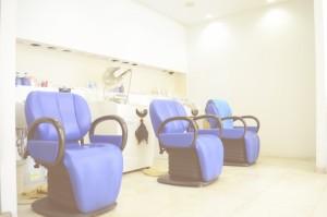 Auto Shampoo System